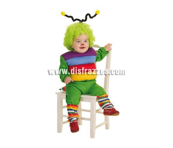 Disfraz de Gusanito para bebés hasta 18 meses. Contiene: Pantalones, camisa con relleno, antenas y calcetines. (sin peluca).