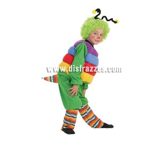 Disfraz de Gusano para niños de 11 a 13 años. Contiene: Pantalones, camisa con relleno, peluca, antenas y calcetines.