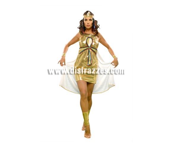 Disfraz de Nefertiti para mujer. Talla standar M-L = 38/42. Incluye vestido con capa, cinturón, tocado, 2 brazaletes espinilleras y 2 muñequeras.