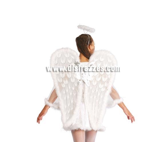 Alas de Angel 75 cm.