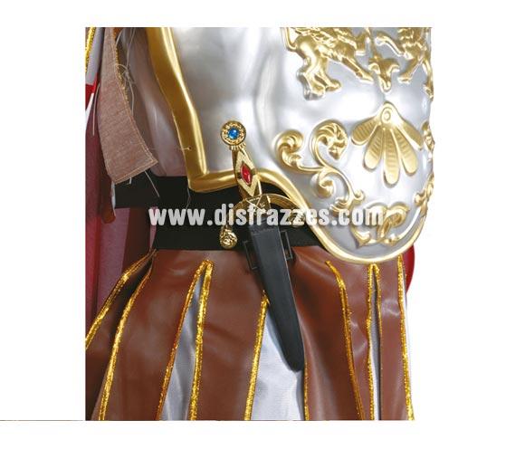 Daga o Puñal  Medieval o Romano 25 cm.