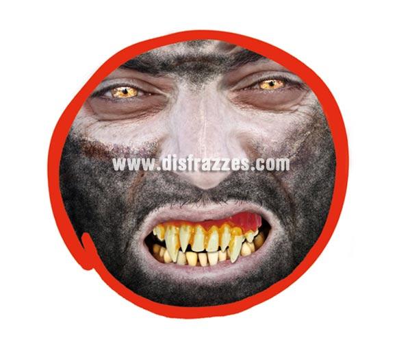 Dientes o dentadura de Monstruo Vampiro para Halloween.