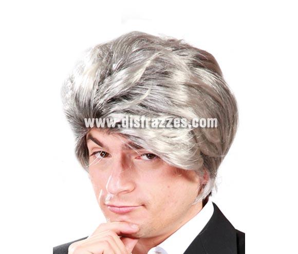 Peluca gris o pelo canoso hombre.