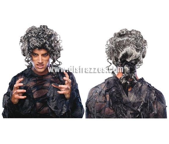 Peluca de Zombie siglo XVIII o peluca de Época. Preciosa peluca de Caballero de Época que sirve tanto para Carnaval, como para Halloween.