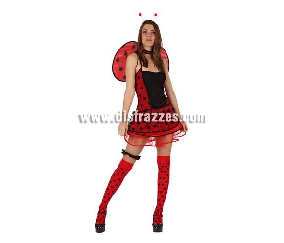 Disfraz de Mariquita sexy para mujer. Talla 3 ó talla XL= 44/48. Incluye Incluye vestido, alas y antenas. Liga y medias NO incluidas.