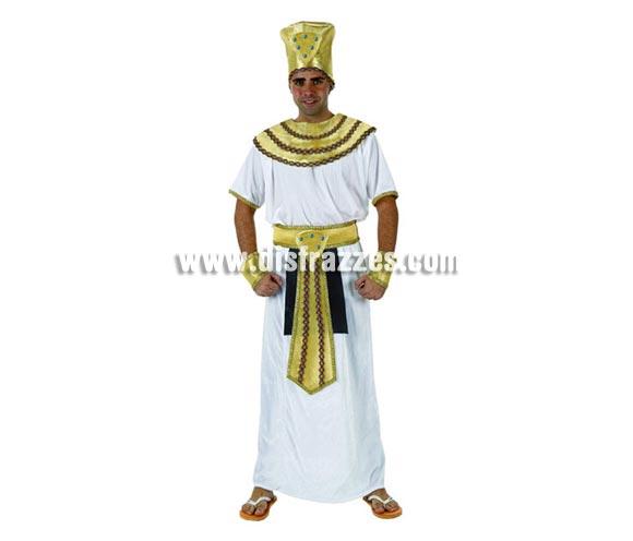 Disfraz de Egipcio para hombre. Talla 3 ó talla XL 54/58. Incluye disfraz completo.