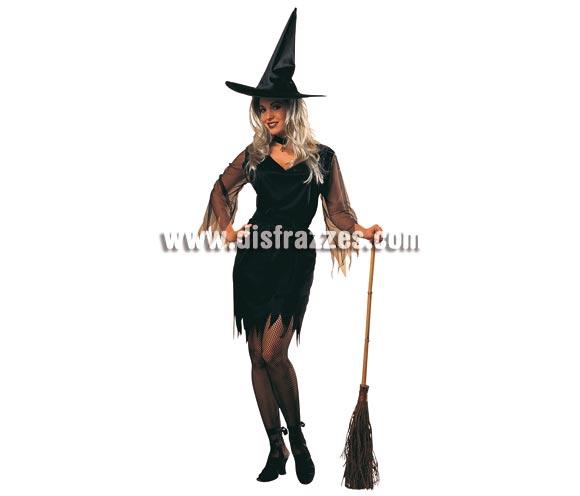Escoba de Bruja para Halloween, el Complemento ideal para tu disfraz.