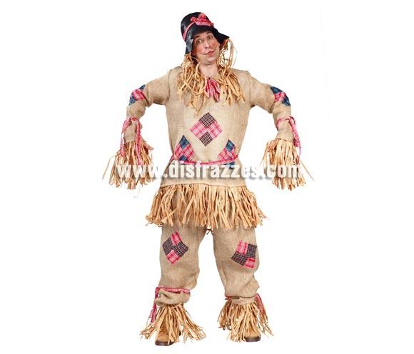 Disfraz de Espantapájaros adulto para Carnavales. Talla única 52/54. Incluye gorro, casaca y pantalón (tela de saco). Pájaro NO incluido. ¡¡Compra tu disfraz para Carnaval en nuestra tienda de disfraces, será divertido!!