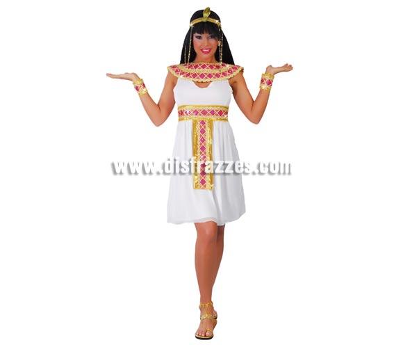 Disfraz de Egipcia para mujer. Talla standar válida hasta una 42/44. Incluye vestido y cuello, brazaletes y cinturón con detalles de lentejuelas.