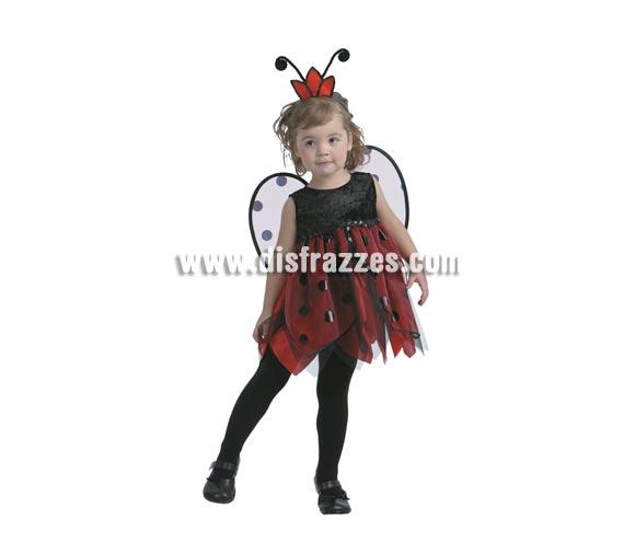 Disfraz de Hada Mariquita. Talla de 1 a 2 años. Incluye vestido, tocado y alas. Pero que reguapa que están las niñas con éste disfraz.
