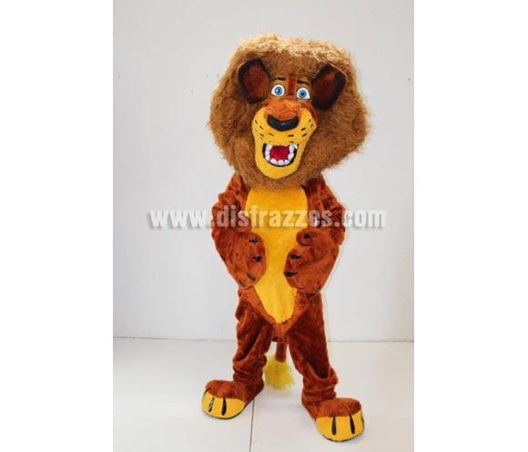 Disfraz o Mascota Publicitaria León