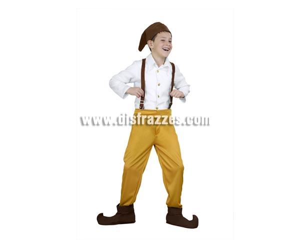 Disfraz de Enanito gorro marrón infantil para Carnaval y para Navidad barato. Talla de 3 a 4 años. Incluye gorro, camisa, tirantes, pantalones y cubrebotas. Disfraz de Duende o Duendecillo para Carnaval o Navidad.