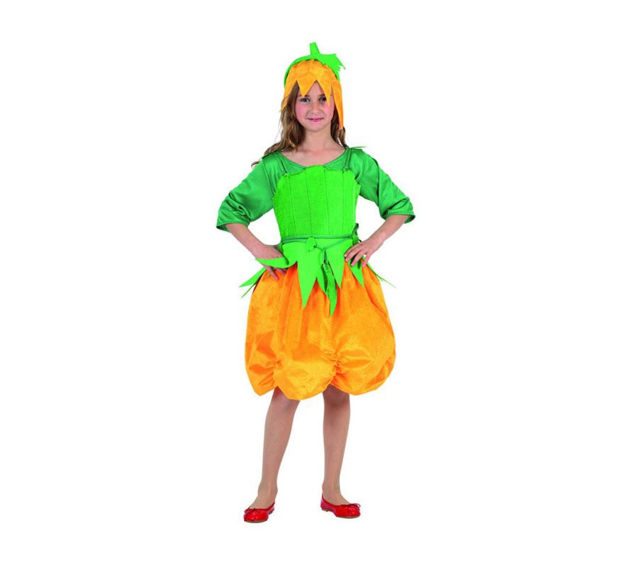 Disfraz de Calabaza para niña. Talla de 3 a 4 años. Incluye traje completo. Bonito vestido de Calabacita para que las niñas vayan preciosas en Halloween.