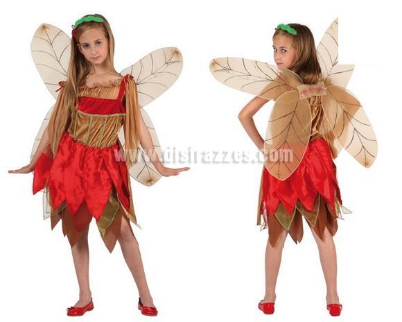 Disfraz de Hada de Otoño para niñas de 5 a 6 años. Incluye disfraz completo.