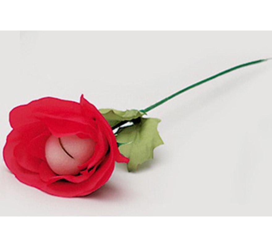 Flor culo, ideal para gastar bromas a los amigos.
