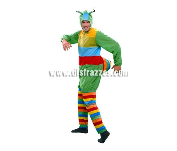 Disfraz de Gusano multicolor para hombre. Talla standar M-L = 52/54. Incluye mono y gorro.