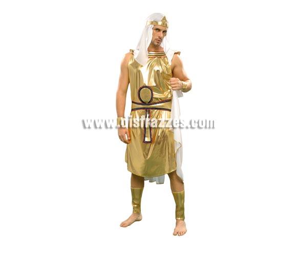 Disfraz de Egipcio Akenaton para hombre. Talla standar M-L = 52/54. Incluye vestido con capa, cinturón, tocado, brazaletes, muñequeras y pañuelo de la cabeza.