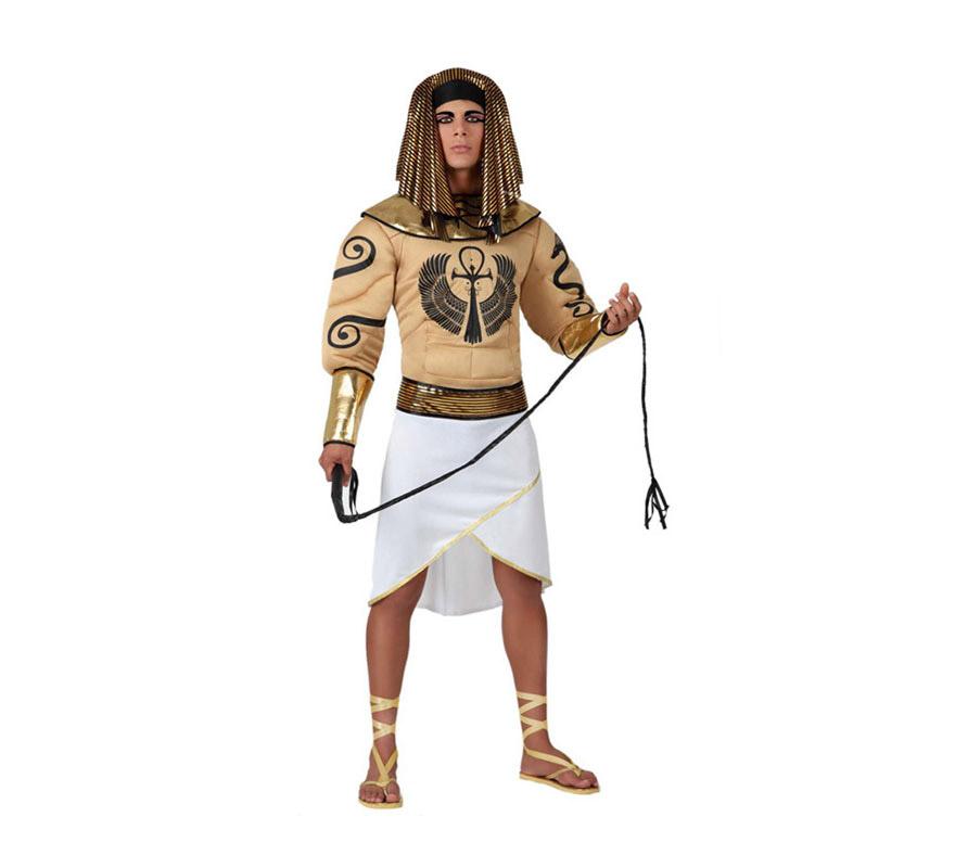 Disfraz de Egipcio para hombre. Talla 2 o talla M-L = 52/54. Incluye disfraz completo SIN sandalias y SIN látigo. podrás encontrarlos en la sección de Complementos. Disfraz de Faraón forzudo para hombre.