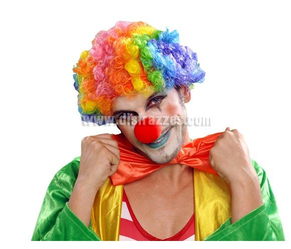 Peluca de Payaso adulto rizada multicolor para Carnaval. Talla universal adultos.
