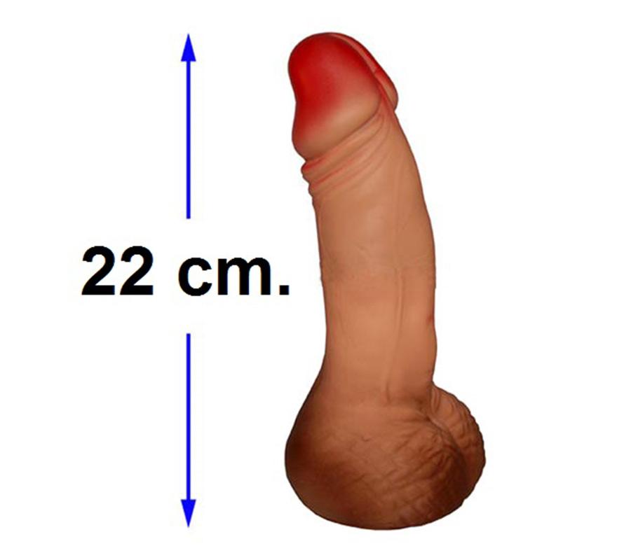 Hucha en forma de pene de 22 cm. Perfecto para Despedidas de Soltero o Soltera.