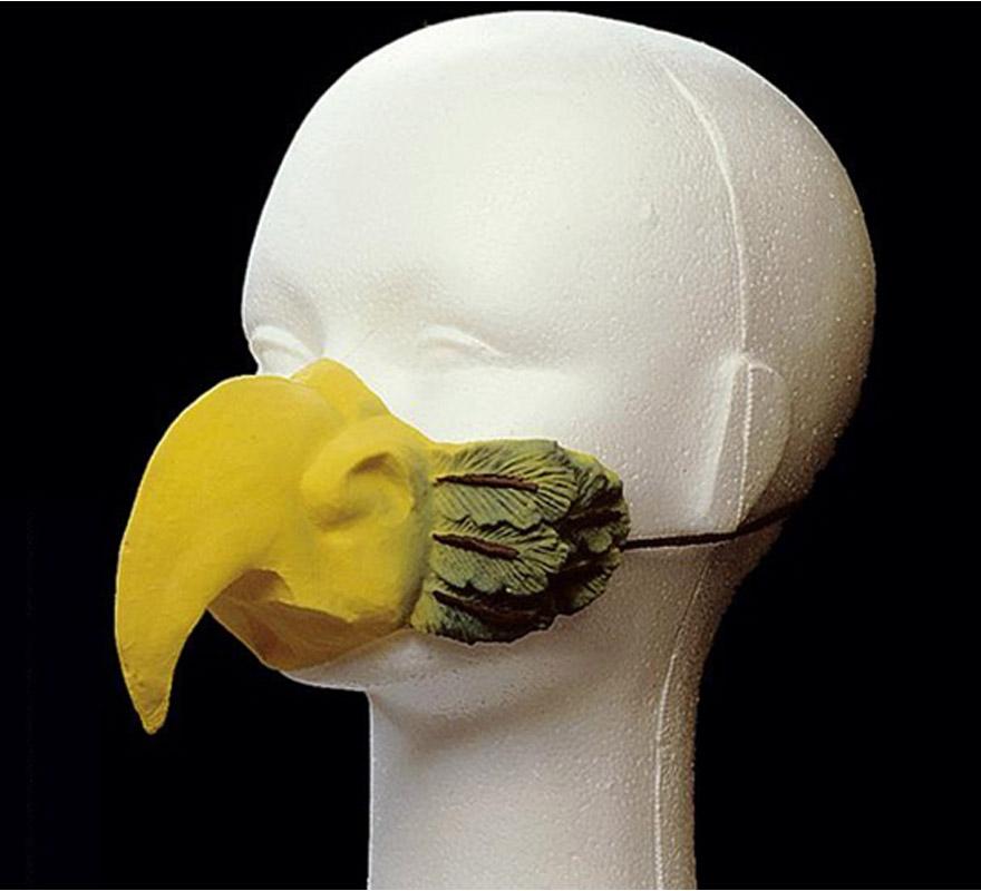 Moflete pico amarillo de Pollo o Loro.