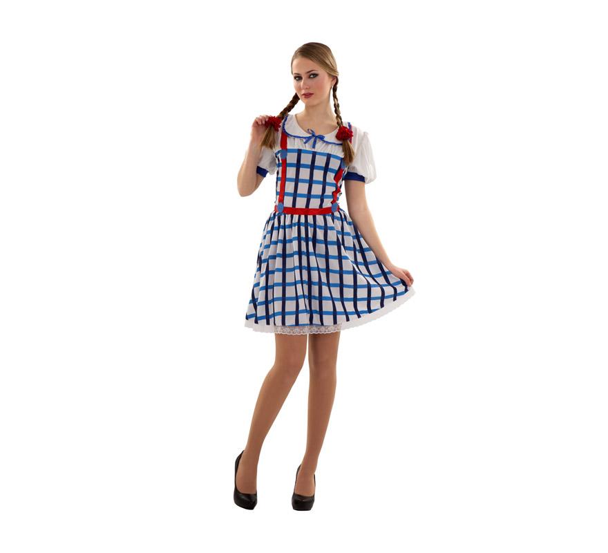 Disfraz de Dorothy o Dorotea para mujer. Talla S 34/38 para chicas delgadas y para adolescentes. Incluye vestido.