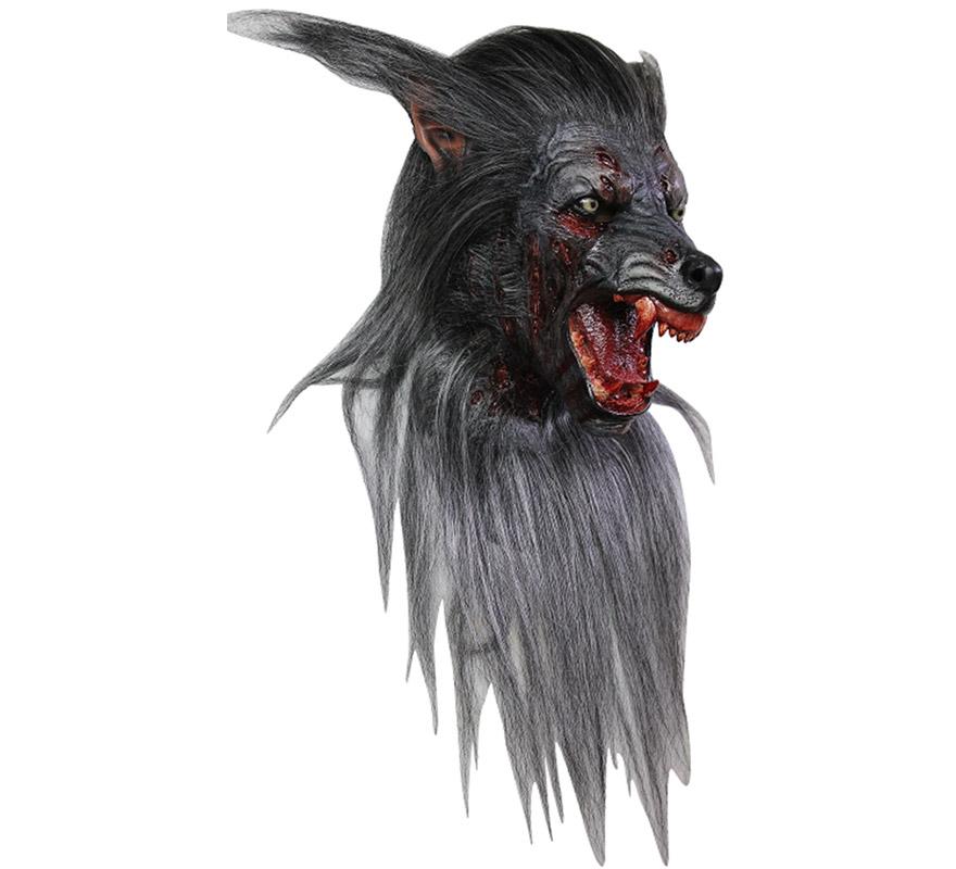 Máscara Black Wolf de látex para Halloween. Alta calidad. Fabricada en látex artesanalmente por una empresa que hace efectos especiales para Hollywood. Máscara de Lobo Negro para dar terror en Halloween. La Máscara es con pelo, tal cual se muestra en la imagen.
