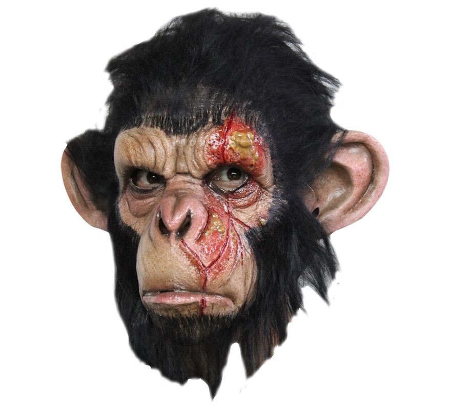Máscara Infected Chimp de látex para Halloween. Alta calidad. Fabricada en látex artesanalmente por una empresa que hace efectos especiales para Hollywood. Máscara de Chimpancé Infectado para dar terror en Halloween.