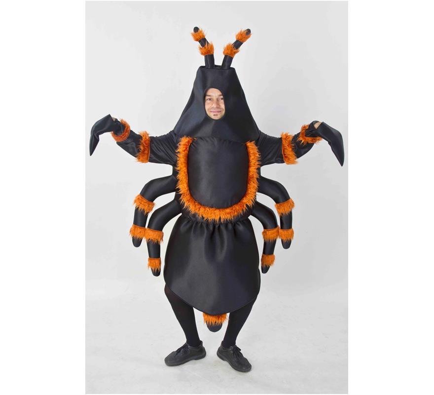 Disfraz barato de Araña o Tarántula para adultos