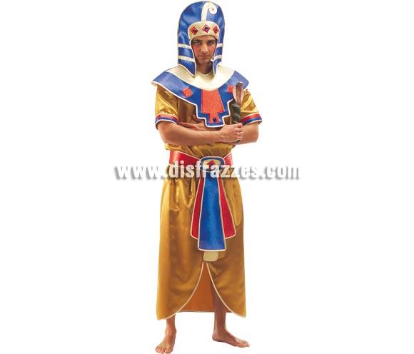 Disfraz de Egipcio para hombre adulto. Talla Standar. Incluye camisa, falda, cinturón, cuello y turbante.