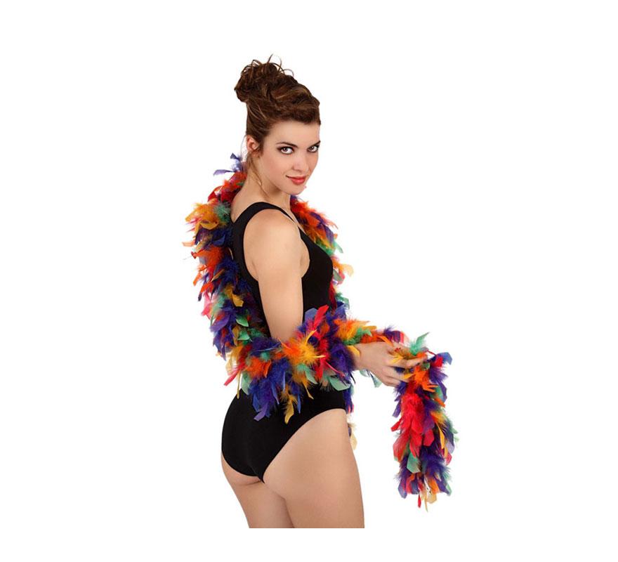 Boa Multicolor de plumas 45 gr.