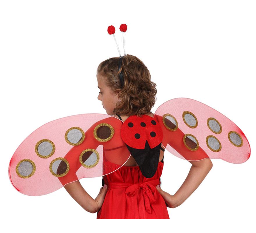 Set de alas de Mariquita y diadema con antenas.