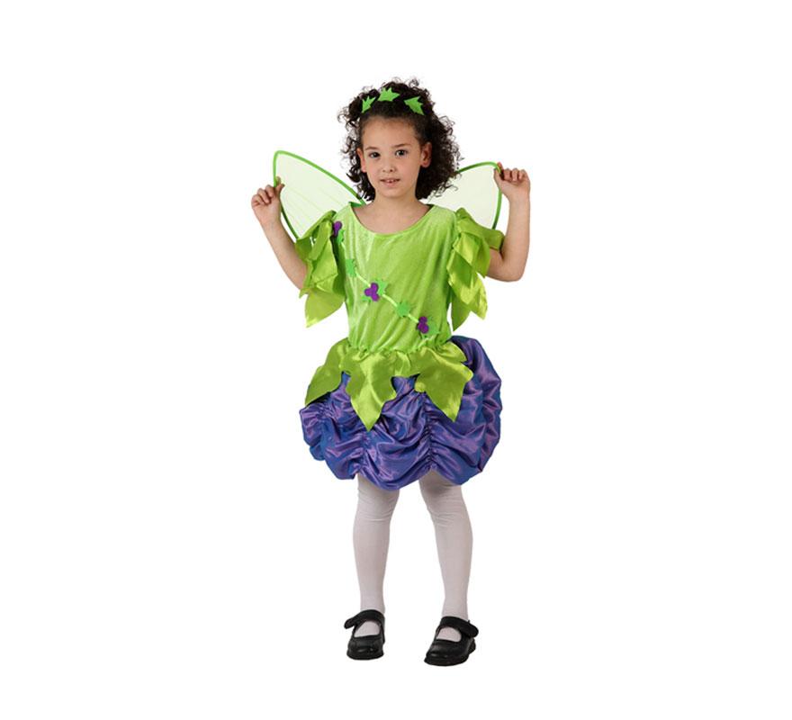 Disfraz de Ninfa del Bosque para niñas de 7-9 años. Incluye vestido, alas y tocado.