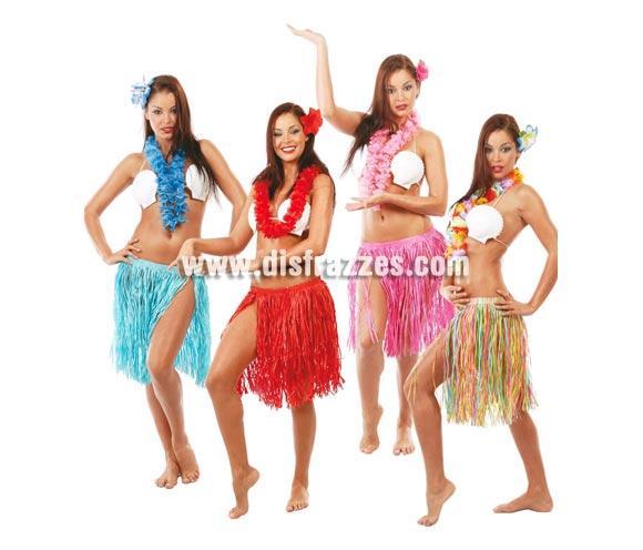 Conjunto de Hawaiana de varios colores. Compuesto por flor para la cabeza, collar y falda. Disfraz de Hawaiana o Hawaiano. Talla única.