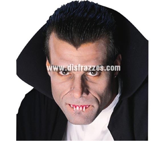 Dientes o Colmillos de Drácula Sangrientos para Halloween.