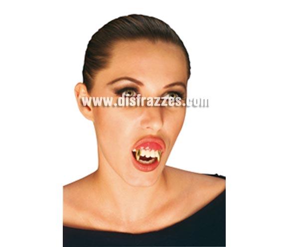 Dientes o Colmillos de Vampiro Oro para Halloween.