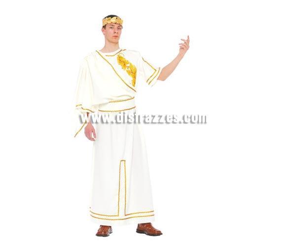 Disfraz barato de Romano para hombre. Talla única 52/54. Incluye corona, vestido y cinturón. Disfraz de César adulto ideal para Carnavales y para Teatros en Navidad.