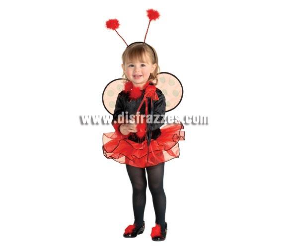 Disfraz de Mariquita para niñas de 3 a 4 años. Incluye maillot con tutú, alitas y tocado para la cabeza.