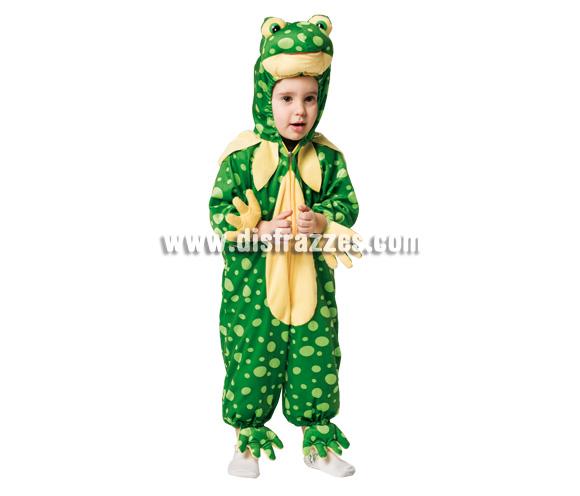 Disfraz de Rana para niños. Incluye disfraz.