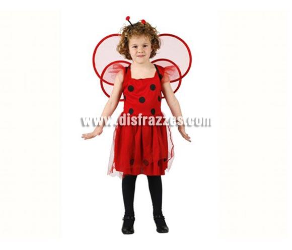 Disfraz de Mariquita para niñas de 7-9 años. Incluye vestido, alas y tocado.