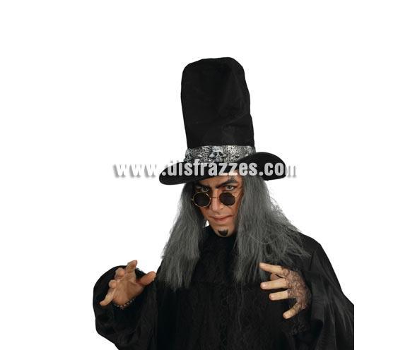 Sombrero o Chistera de Brujo con pelo para Halloween.