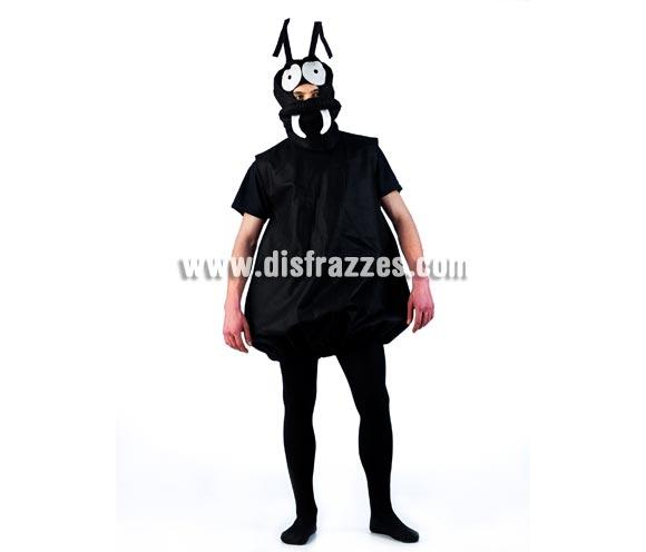 Disfraz de Hormiga Africana para adultos. Talla Universal. Incluye capucha y cuerpo. Un disfraz muy original ideal para Peñas, Grupos y Comparsas.