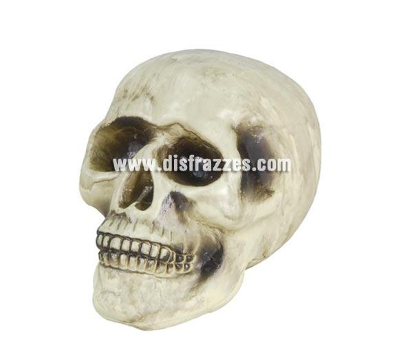 Calavera decorativa para Halloween, 20 cm.