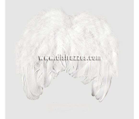 Alas de Ángel plumas SUPER MINI de 20x20 cm. Son el tamaño ideal para Bebés.