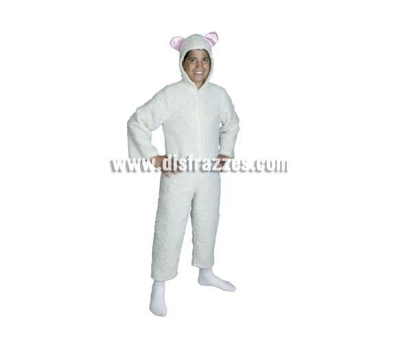 Disfraz de Ovejita Blanca talla de 5 a 6 años. Incluye mono con capucha. Ideal para Belenes de colegios.