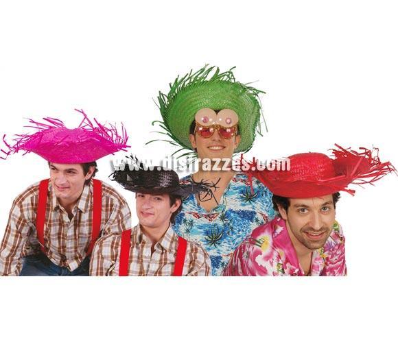 Sombrero Espantapájaros de paja. Varios colores. Precio por unidad, se venden por separado. Ideal para las Fiestas de Verano y para los disfraces de Hawaiano. Talla universal adultos.