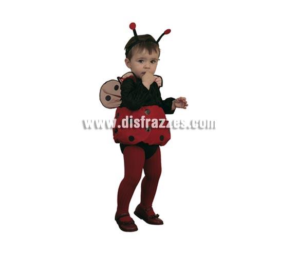 Disfraz de Mariquita bebé para Carnaval. Talla de 6 a 12 meses. Incluye diadema, vestido con alas y braguita.