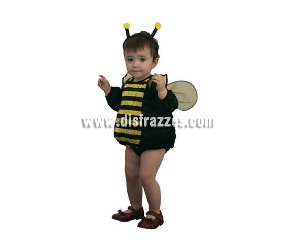 Disfraz de Abejita bebé barato para Carnaval. Talla de 6 a 12 meses. Disfraz de Abeja. Incluye diadema, vestido con alas y braguita.