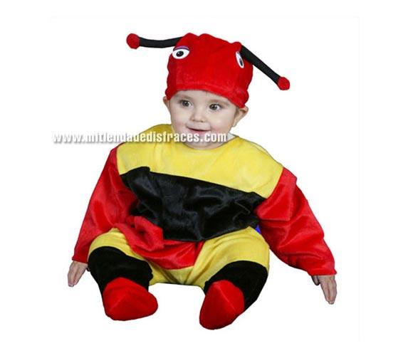 Disfraz barato de Gusanito 6-12 meses para Bebés
