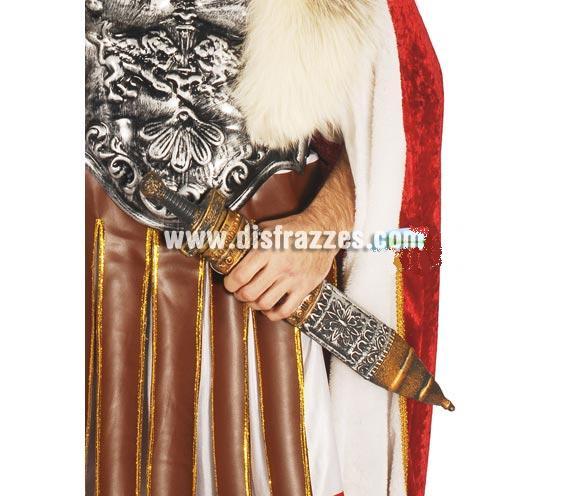 Espada de Romano 56 cm. Perfecta como complemento del disfraz de Astérix o de Centurión Romano en Navidad.